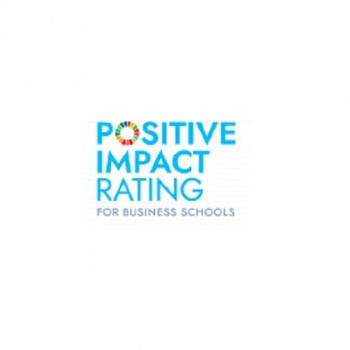 Positive Impact Rating grafika
